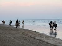 Cabalgatas en las playas de cariló