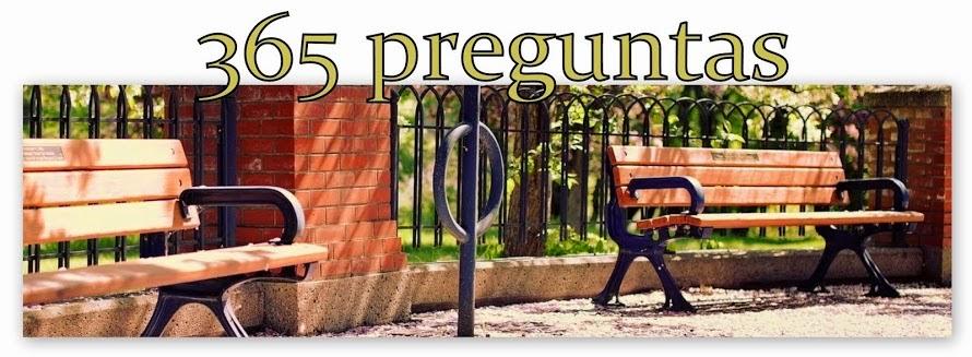 Blog 365 días