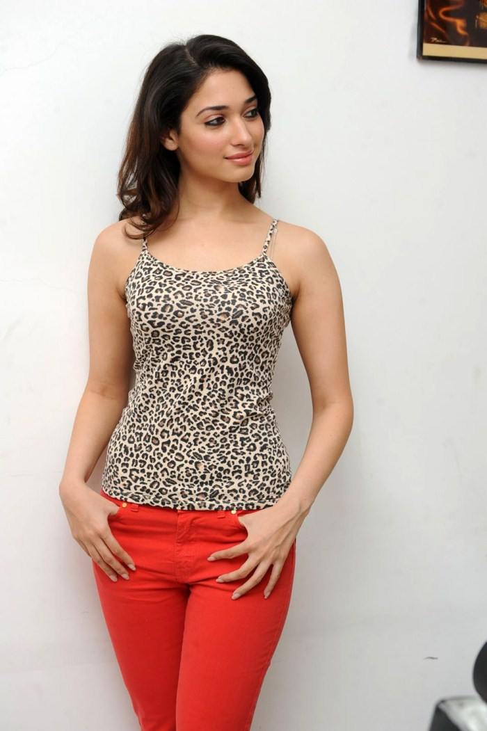 Tamanna New Photoshoot Stills