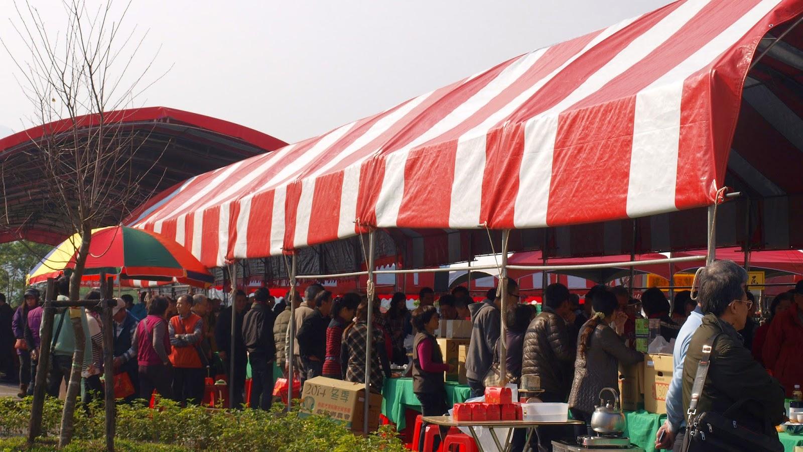 2014 鹿谷農會比賽茶 冬茶 展售會