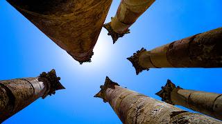 Six columns in the same shot