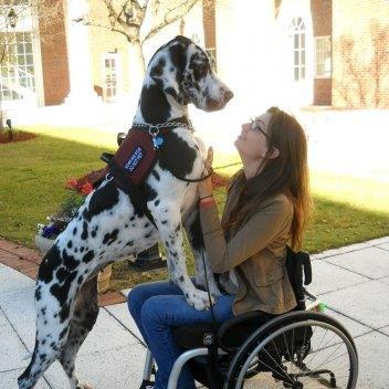 Service Dogs For Ms Patients