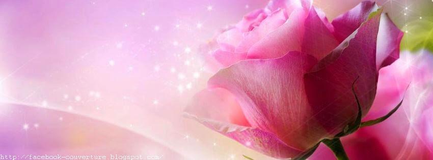 Belle couverture facebook avec fleur d'amour