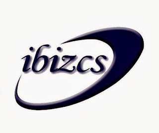 Ibiz Consulting Services Indonesia, Konsultan IT