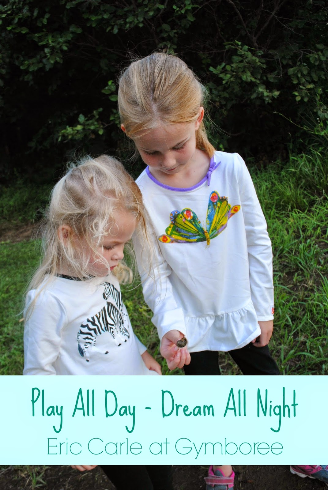 Play All Day Dream All Night Eric Carle at Gymboree