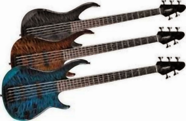 The 5-String Bass Guitar