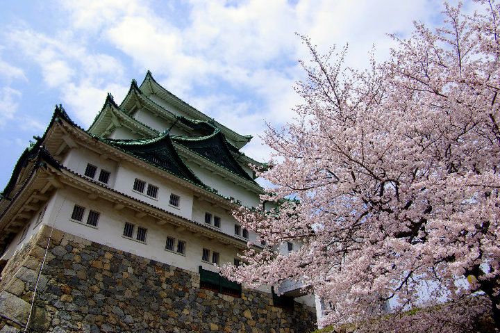 Pinoy Japan: Hiroshima Castle