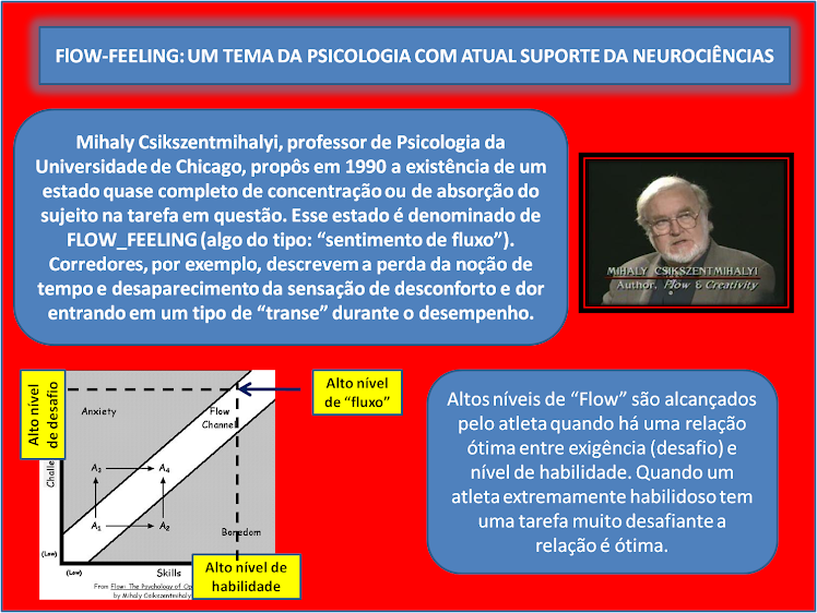 PSICOLOGIA COGNITIVA E NEUROCIÊNCIAS: FLOW-FEELING