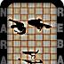 Bertukar Link Dengan Nara Reba