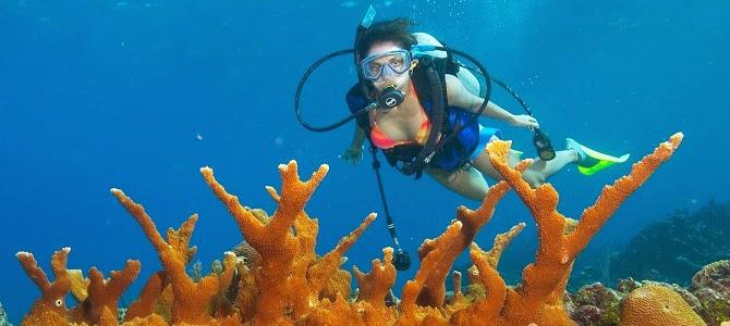 Scuba Plus, centro de buceo en Menorca, El gran agujero Azul 4