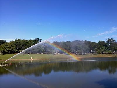 Lago do Parque Vaca Brava, oferece a oportunidade de convivência com a natureza em pleno cento da cidade.