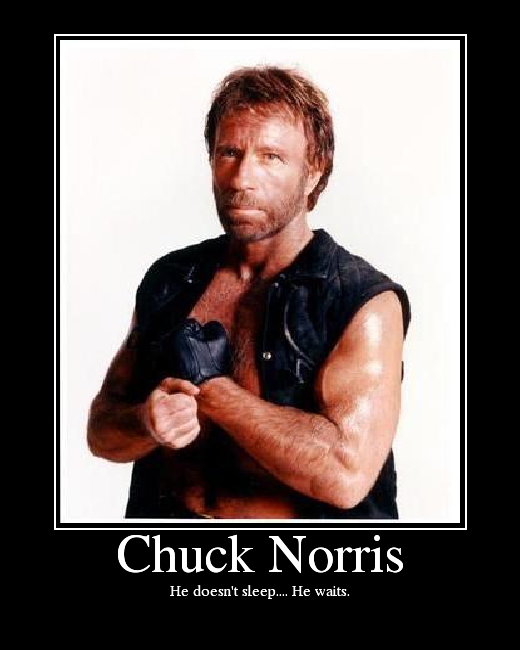 Chuck norris dissertation