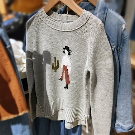 Madewell El Rancho sweater just in time for Fall.