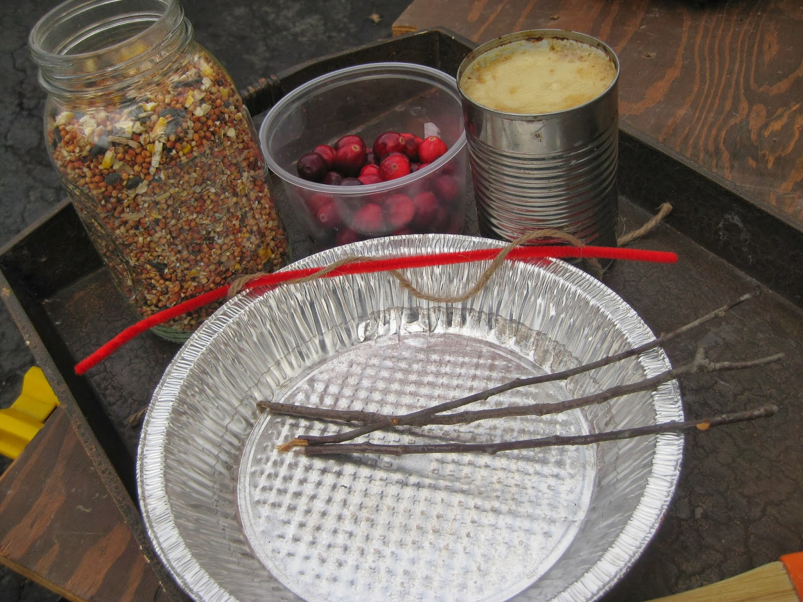 how to make suet with bacon grease