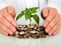 Cara Mengelola Uang dan Membuatnya Bekerja Untuk Anda