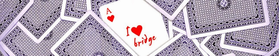 Bridge for Fun