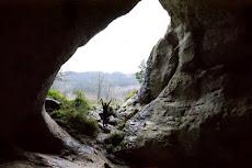 Cueva de Baltzola (Álava)