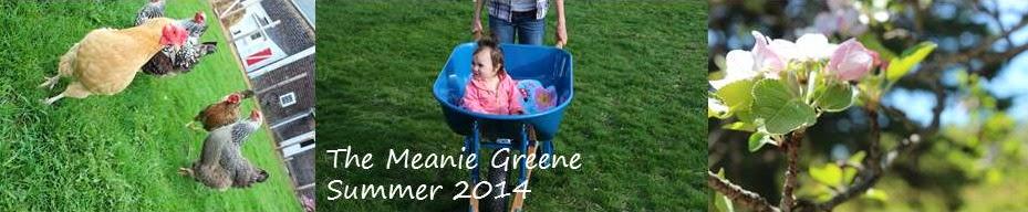 The Meanie Greene