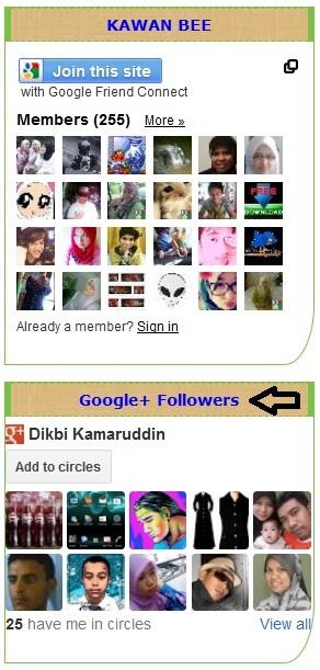 Google+ Followers Gadget