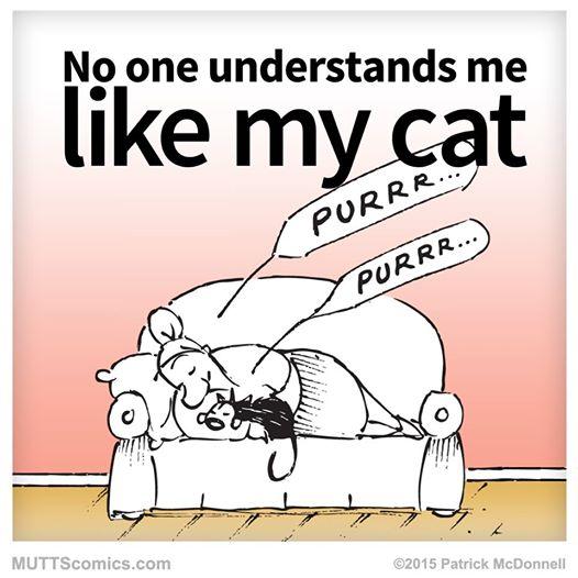 Mutual understanding...