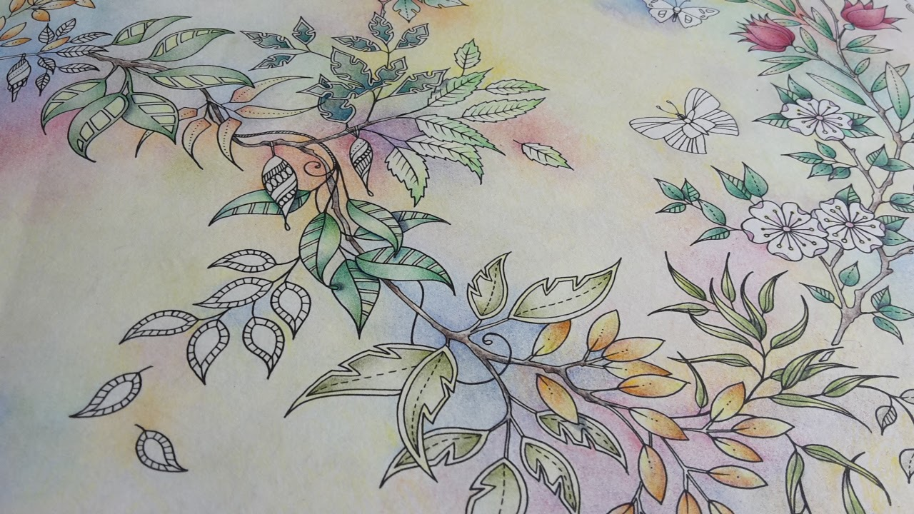 If You Want To Purchase Johanna Basfords Wonderful Colouring Book Can Use One Of The Affiliate Links Below Or Visit Our WEBSHOPS