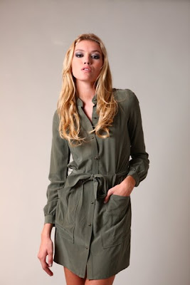 Silk Army Shirtdress