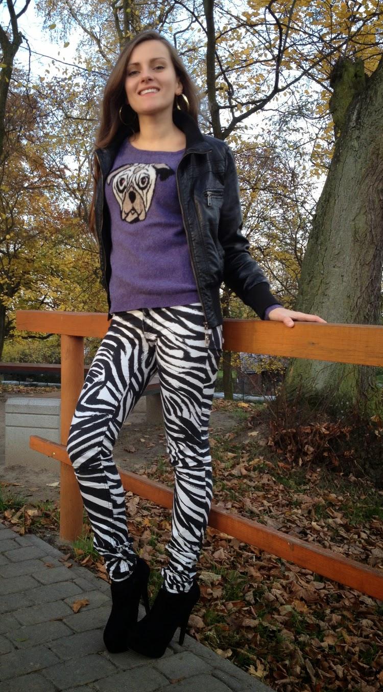 stylizacja ze spodniami w zebre
