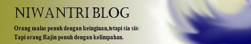 Niwantri Blog