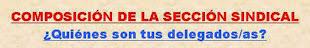 Delegados de CCOO en Diputación: