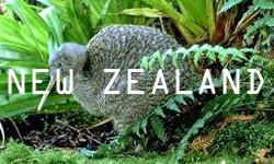 http://ilovetostudyinnewzealand.blogspot.co.nz/
