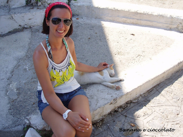 gatti greci, Zia, Kos