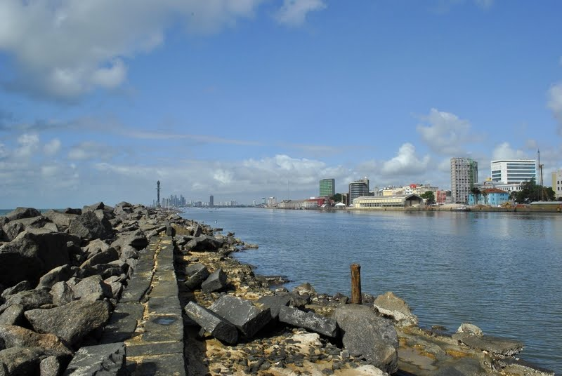 Arrecifes e o Porto do Recife