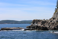 The cliffs around Bar Harbor.