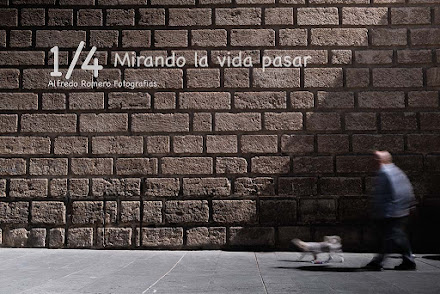 1/4 Mirando la vida pasar (1/4 looking at life happening)