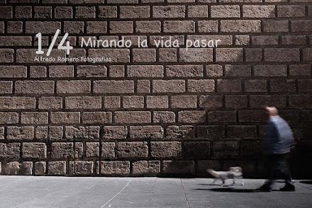 1/4 Mirando la vida pasar (1/4 looking at life happening)