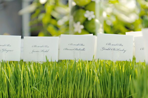 Place Card Holder Ideas