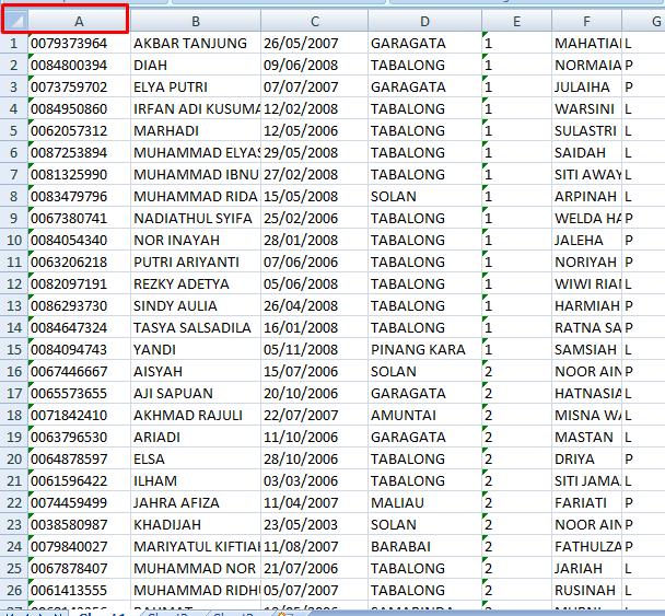 Cara Menyimpan NISN Hasil Verval PD Pada Ms.Excel