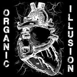 organic illusion - band