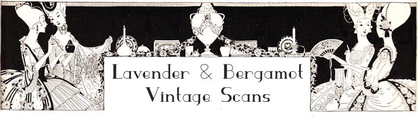 lavender and bergamot, vintage scans