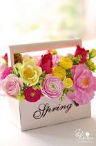 Primavera chegando.....