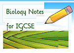 IGCSE Biology on Weebly.com