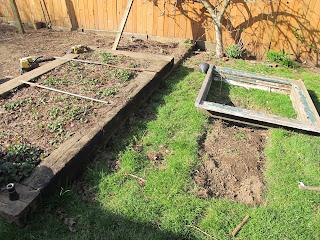 With Great Joy 2013 Garden plans
