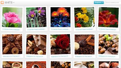 ></a><br>Y si por último deseo ver mi blog 'FOTOFRONTERA' en la vista dinámica 'MOSAIC', entonces tendré esta hermosa versión tras haberle agregado <b>/view/mosaic</b> a la dirección de mi website. <a href=