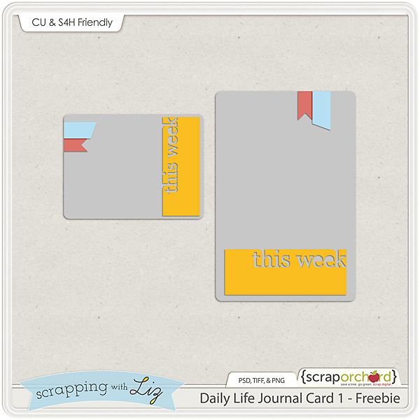 http://www.scrappingwithliz.com/2014/01/daily-life-page-1-freebie-tips.html
