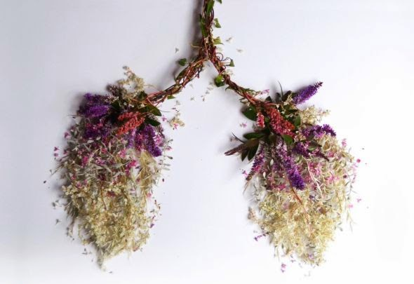 Camila Sitarama Carlow sculpture photography plants flowers arranged human body organs Lungs