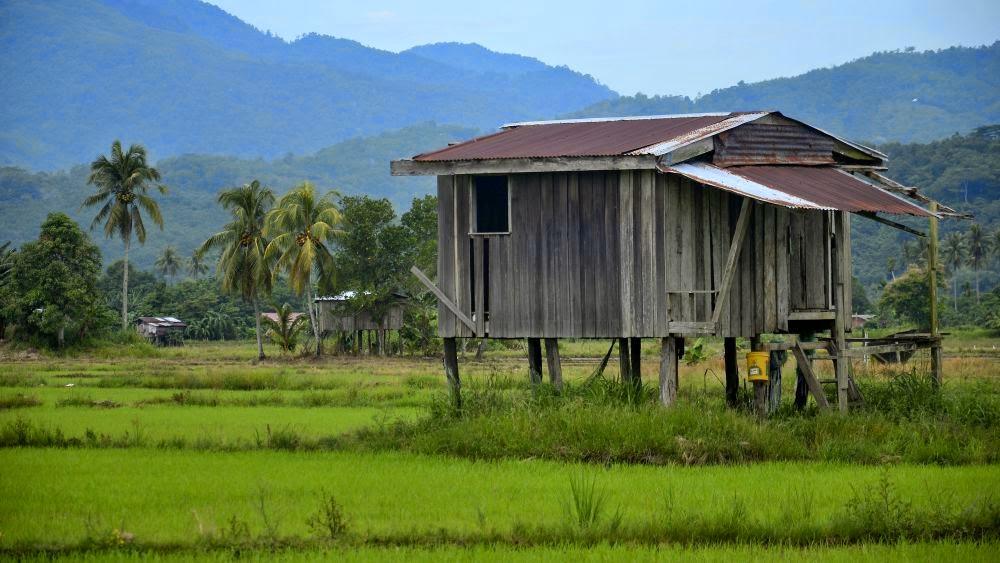 Kes potong kepala dan Lebuhraya Pan Borneo