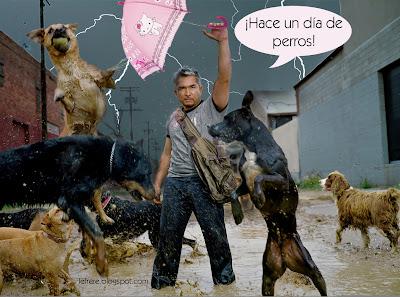 César Millán, el encantador, de perros, le frère