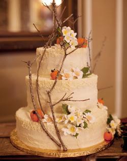 my wedding dress outdoor wedding cakes. Black Bedroom Furniture Sets. Home Design Ideas