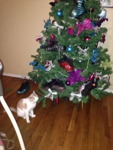 > Whose Christmas Tree Is This - Photo posted in Kicks @ BX  (Sneakers & Clothing) | Sign in and leave a comment below!