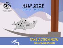 Υπογράψτε και βοηθήστε τις φώκιες